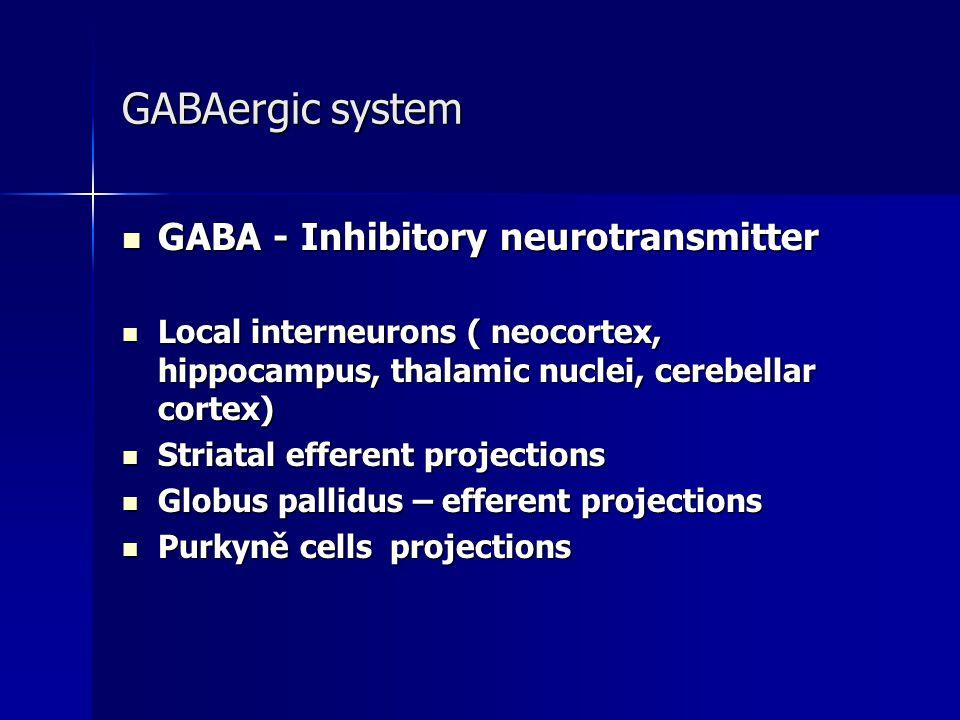 GABAergic system GABA - Inhibitory neurotransmitter GABA - Inhibitory neurotransmitter Local interneurons ( neocortex, hippocampus, thalamic nuclei, c