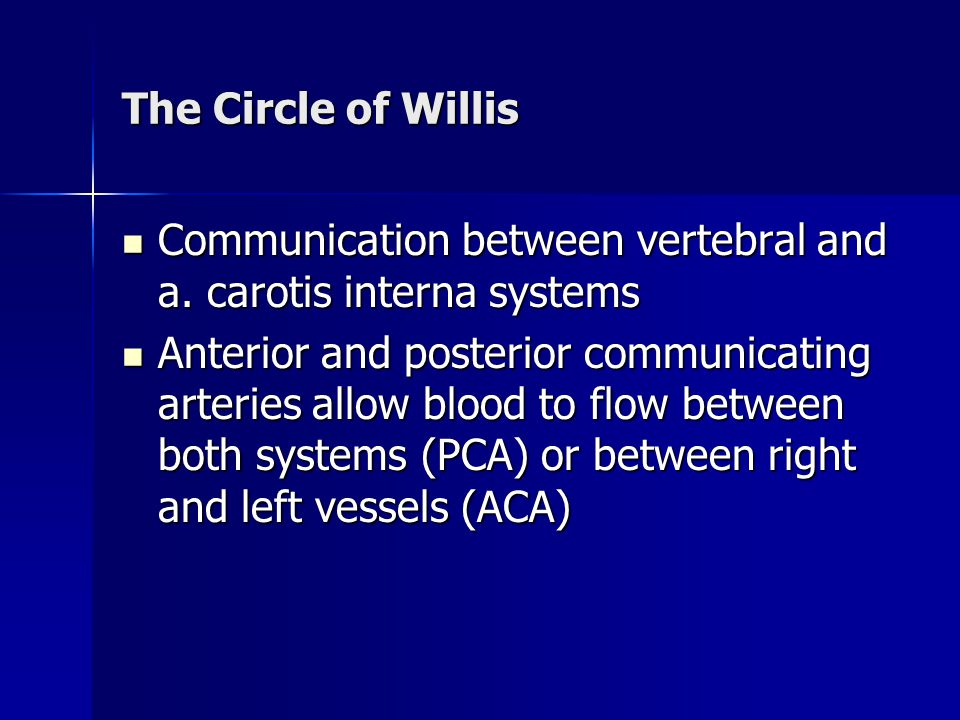The Circle of Willis Communication between vertebral and a. carotis interna systems Communication between vertebral and a. carotis interna systems Ant