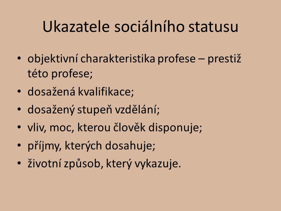 Druhy sociálních statusů Vrozený – připsaný (askriptivní); souvisí s vlastnostmi, které si nemůžeme vybírat; může se stát překážkou sociální mobility; pohlaví; rasa; věk; Získaný – můžeme na něm aktivně pracovat; zaměstnání; dosažené vzdělání.