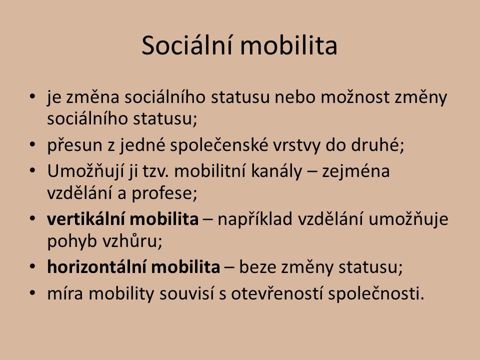Sociální mobilita je změna sociálního statusu nebo možnost změny sociálního statusu; přesun z jedné společenské vrstvy do druhé; Umožňují ji tzv. mobi