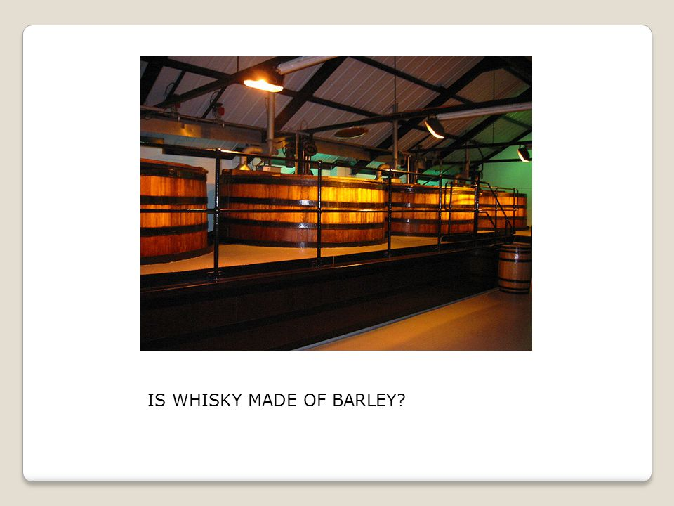 IS WHISKY MADE OF BARLEY?