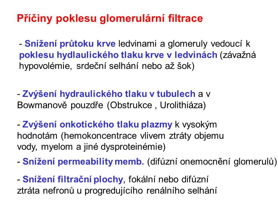 Příčiny poklesu glomerulární filtrace - Zvýšení hydraulického tlaku v tubulech a v Bowmanově pouzdře (Obstrukce, Urolithiáza) - Zvýšení onkotického tlaku plazmy k vysokým hodnotám (hemokoncentrace vlivem ztráty objemu vody, myelom a jiné dysproteinémie) - Snížení průtoku krve ledvinami a glomeruly vedoucí k poklesu hydlaulického tlaku krve v ledvinách (závažná hypovolémie, srdeční selhání nebo až šok) - Snížení permeability memb.