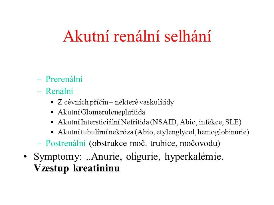 Akutní renální selhání –Prerenální –Renální Z cévních příčin – některé vaskulitidy Akutní Glomerulonephritida Akutní Intersticiální Nefritida (NSAID, Abio, infekce, SLE) Akutní tubulírní nekróza (Abio, etylenglycol, hemoglobinurie) –Postrenální (obstrukce moč.