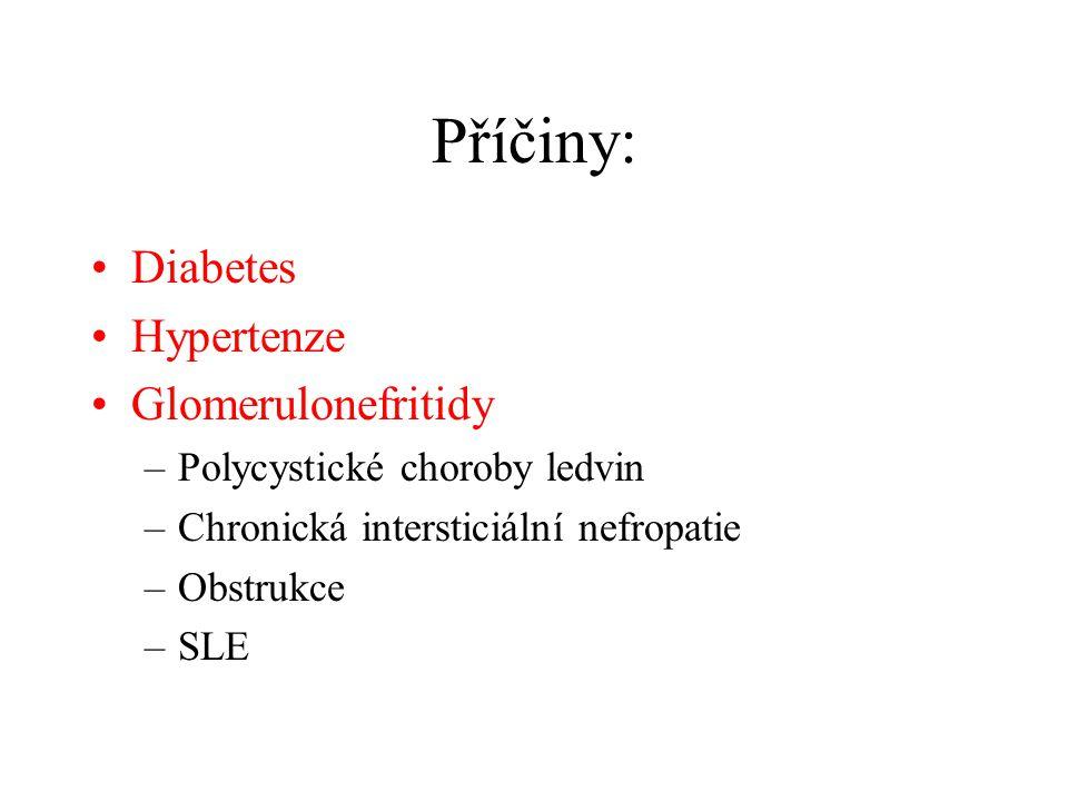 Příčiny: Diabetes Hypertenze Glomerulonefritidy –Polycystické choroby ledvin –Chronická intersticiální nefropatie –Obstrukce –SLE