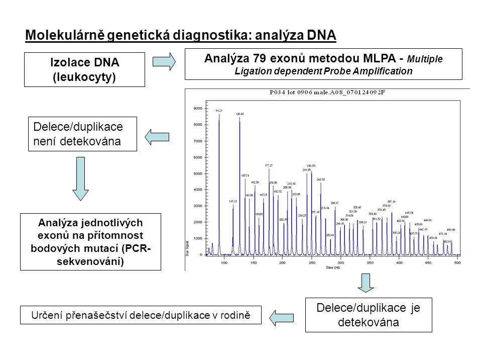 Molekulárně genetická diagnostika: analýza DNA Určení přenašečství delece/duplikace v rodině Izolace DNA (leukocyty) Analýza 79 exonů metodou MLPA - M