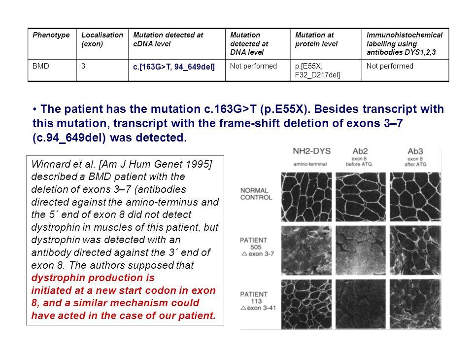PhenotypeLocalisation (exon) Mutation detected at cDNA level Mutation detected at DNA level Mutation at protein level Immunohistochemical labelling us
