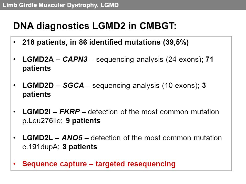 218 patients, in 86 identified mutations (39,5%) LGMD2A – CAPN3 – sequencing analysis (24 exons); 71 patients LGMD2D – SGCA – sequencing analysis (10 exons); 3 patients LGMD2I – FKRP – detection of the most common mutation p.Leu276Ile; 9 patients LGMD2L – ANO5 – detection of the most common mutation c.191dupA; 3 patients Sequence capture – targeted resequencing DNA diagnostics LGMD2 in CMBGT: Limb Girdle Muscular Dystrophy, LGMD