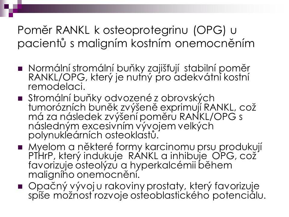 Poměr RANKL k osteoprotegrinu (OPG) u pacientů s maligním kostním onemocněním Normální stromální buňky zajišťují stabilní poměr RANKL/OPG, který je nutný pro adekvátní kostní remodelaci.