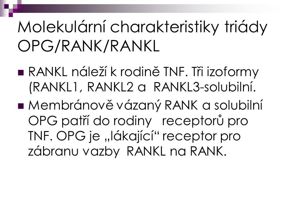 Molekulární charakteristiky triády OPG/RANK/RANKL RANKL náleží k rodině TNF.