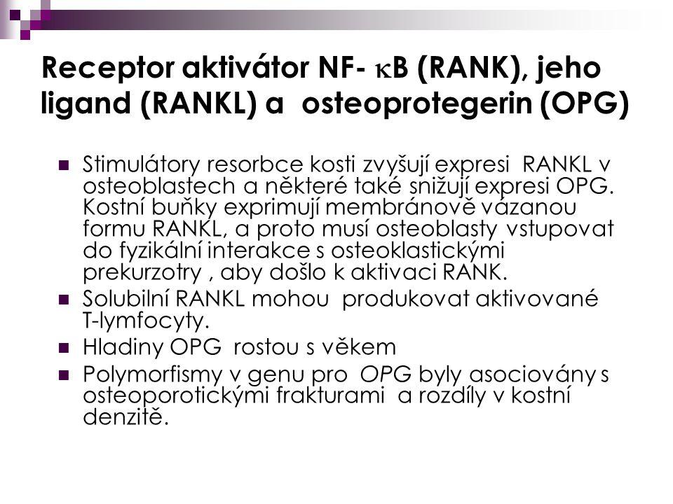 Revmatoidní artritida - patogeneze  Běžné onemocnění (1% populace), ženy 40-60 let (Ž/M 3:1)  Hlavním terčem imunopatologické reaktivity – synoviální membrána (hyperplastická, vaskularizovaná a infiltrovaná zánětlivými buňkami  Genetická predispozice (HLA DRB) Krejsek et al., 2004
