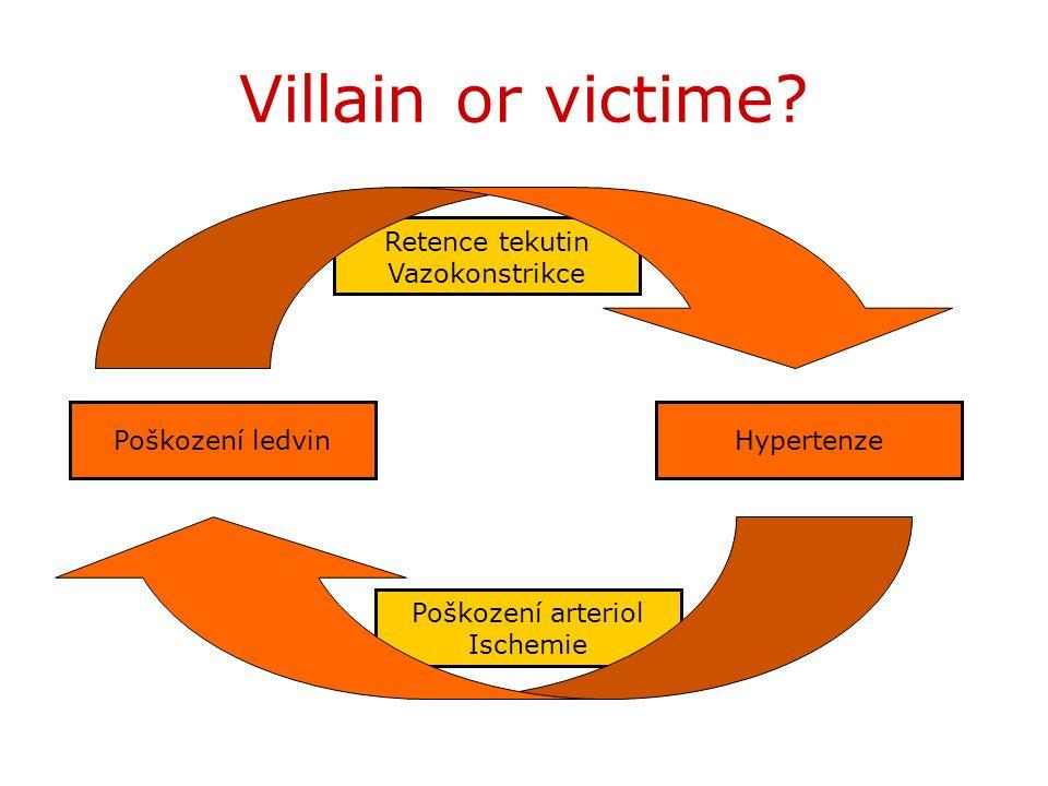 Poškození arteriol Ischemie Retence tekutin Vazokonstrikce Villain or victime? HypertenzePoškození ledvin