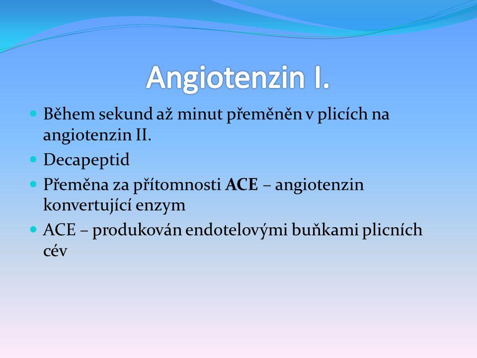 Během sekund až minut přeměněn v plicích na angiotenzin II. Decapeptid Přeměna za přítomnosti ACE – angiotenzin konvertující enzym ACE – produkován en