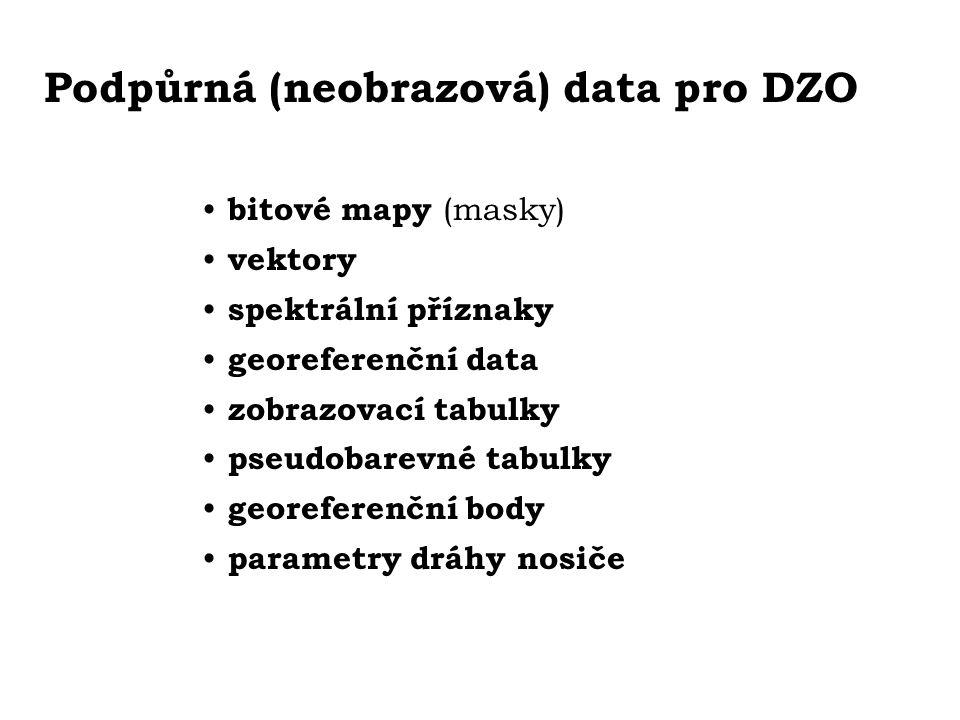 Podpůrná (neobrazová) data pro DZO bitové mapy (masky) vektory spektrální příznaky georeferenční data zobrazovací tabulky pseudobarevné tabulky georef