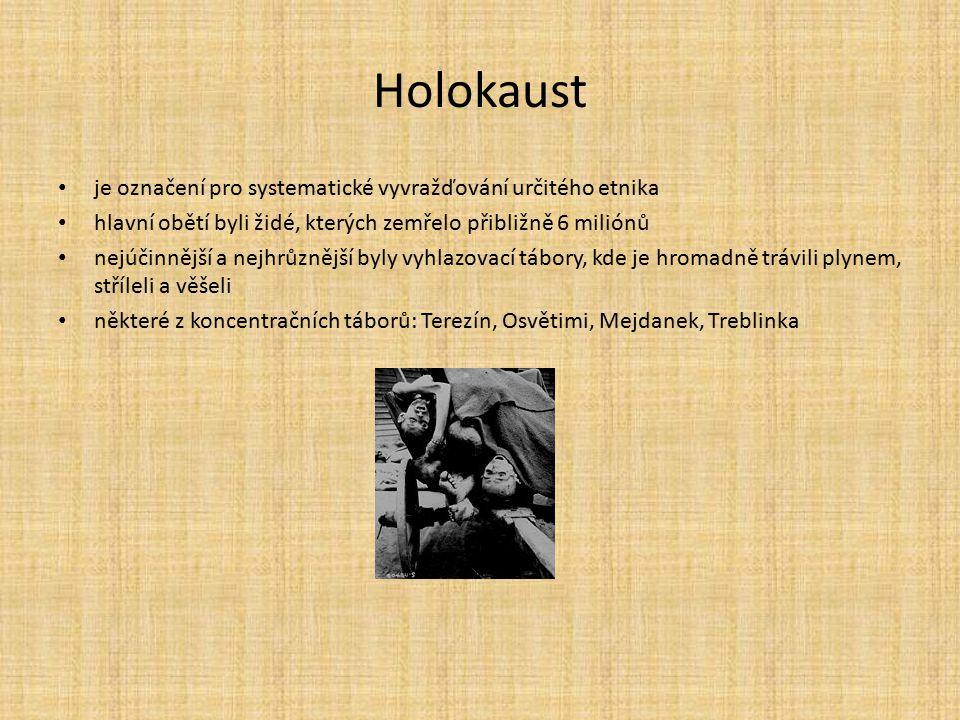 Holokaust je označení pro systematické vyvražďování určitého etnika hlavní obětí byli židé, kterých zemřelo přibližně 6 miliónů nejúčinnější a nejhrůz