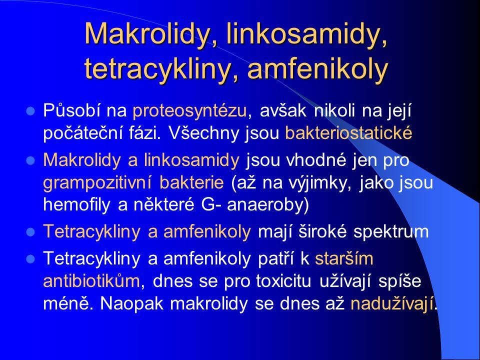 Makrolidy, linkosamidy, tetracykliny, amfenikoly Působí na proteosyntézu, avšak nikoli na její počáteční fázi. Všechny jsou bakteriostatické Makrolidy
