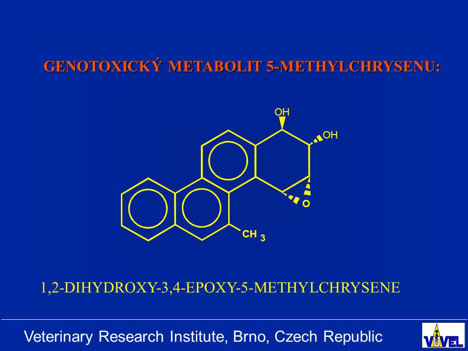 Veterinary Research Institute, Brno, Czech Republic OH O CH 3 1,2-DIHYDROXY-3,4-EPOXY-5-METHYLCHRYSENE GENOTOXICKÝ METABOLIT 5-METHYLCHRYSENU: