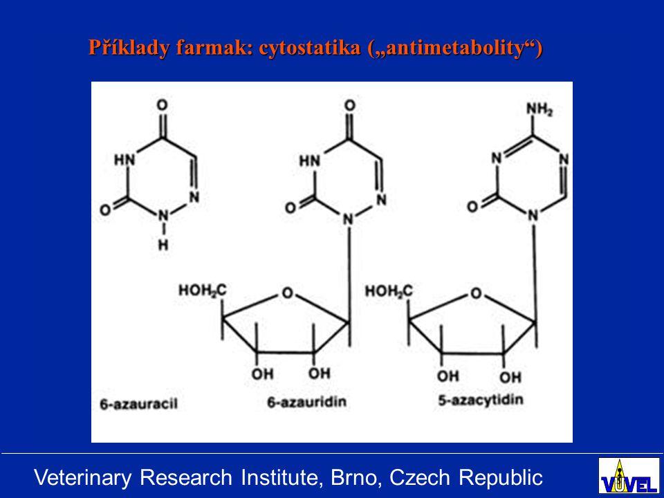 """Příklady farmak: cytostatika (""""antimetabolity )"""
