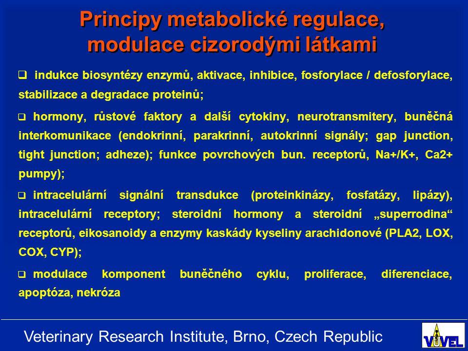 Veterinary Research Institute, Brno, Czech Republic Principy metabolické regulace, modulace cizorodými látkami   indukce biosyntézy enzymů, aktivace, inhibice, fosforylace / defosforylace, stabilizace a degradace proteinů;   hormony, růstové faktory a další cytokiny, neurotransmitery, buněčná interkomunikace (endokrinní, parakrinní, autokrinní signály; gap junction, tight junction; adheze); funkce povrchových bun.