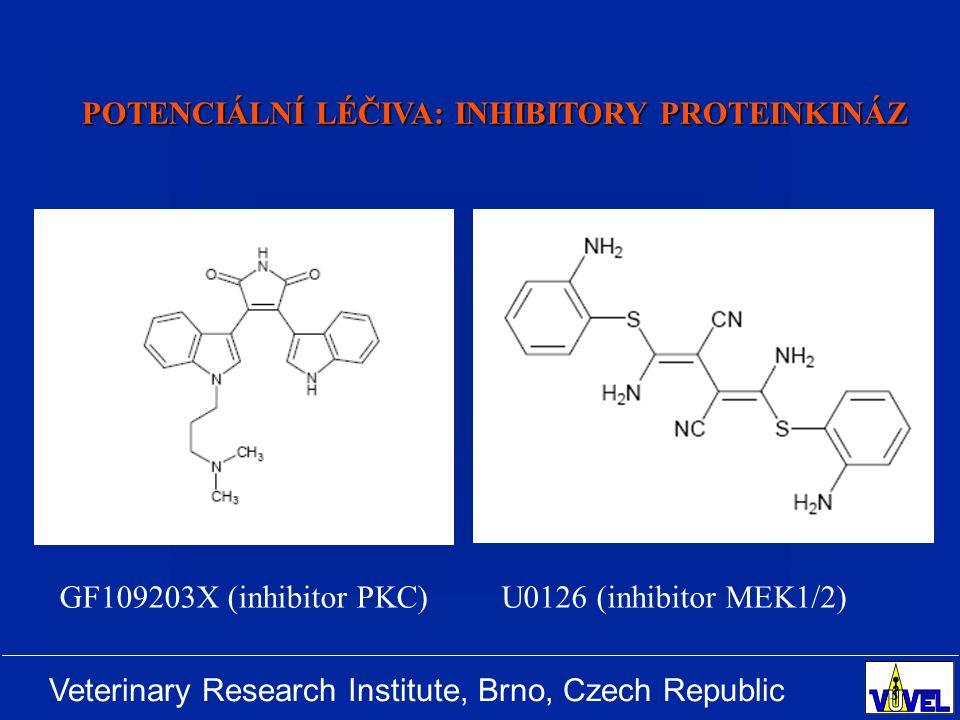 Veterinary Research Institute, Brno, Czech Republic U0126 (inhibitor MEK1/2)GF109203X (inhibitor PKC) POTENCIÁLNÍ LÉČIVA: INHIBITORY PROTEINKINÁZ