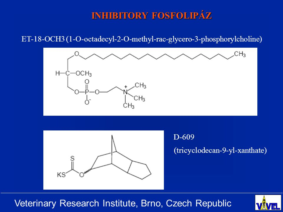 Veterinary Research Institute, Brno, Czech Republic INHIBITORY FOSFOLIPÁZ ET-18-OCH3 (1-O-octadecyl-2-O-methyl-rac-glycero-3-phosphorylcholine) D-609 (tricyclodecan-9-yl-xanthate)