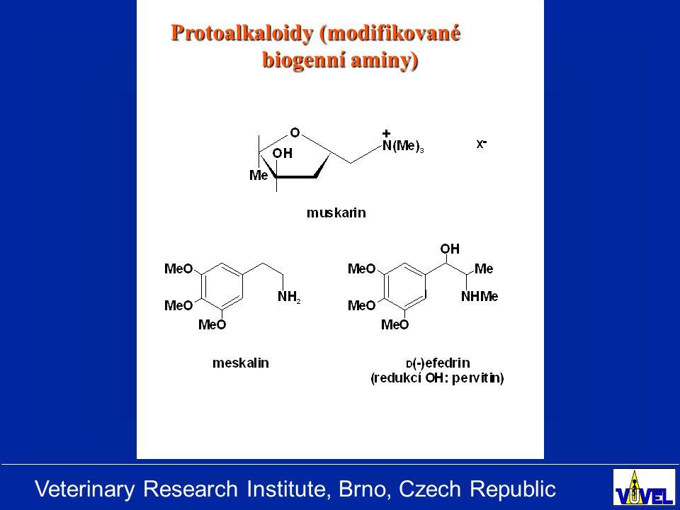 Veterinary Research Institute, Brno, Czech Republic INHIBITORY CYKLOOXYGENÁZ (NSAID) IndomethacinIbuprofen