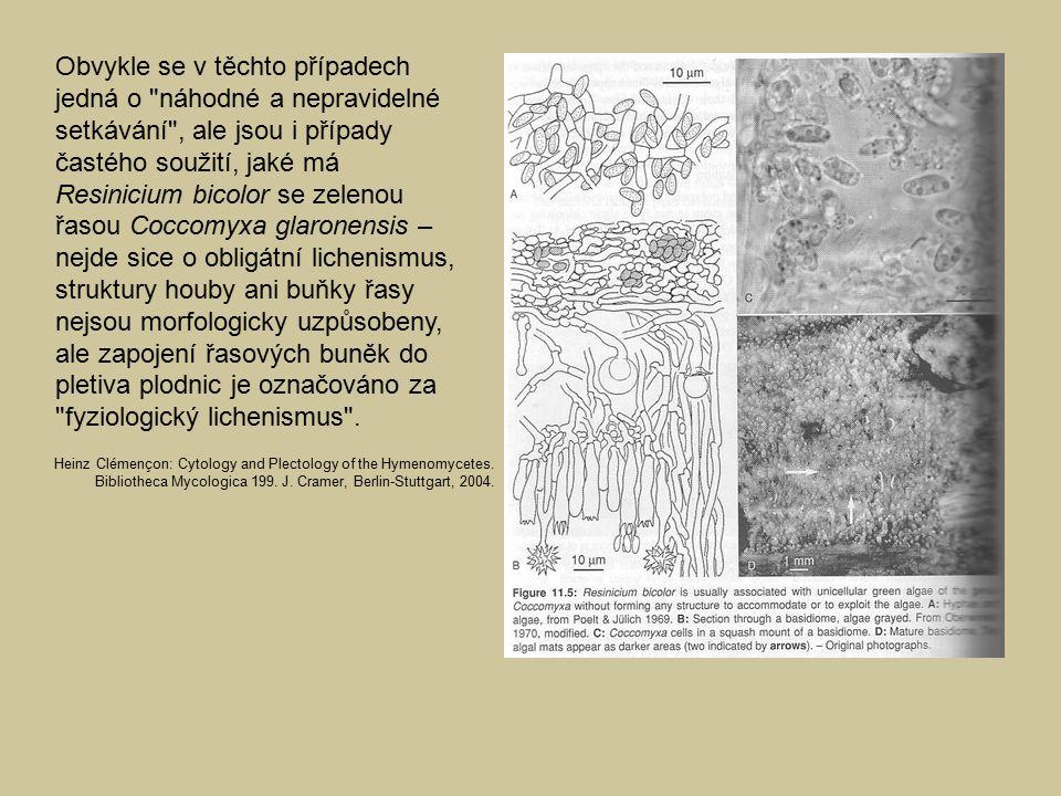 Obvykle se v těchto případech jedná o náhodné a nepravidelné setkávání , ale jsou i případy častého soužití, jaké má Resinicium bicolor se zelenou řasou Coccomyxa glaronensis – nejde sice o obligátní lichenismus, struktury houby ani buňky řasy nejsou morfologicky uzpůsobeny, ale zapojení řasových buněk do pletiva plodnic je označováno za fyziologický lichenismus .