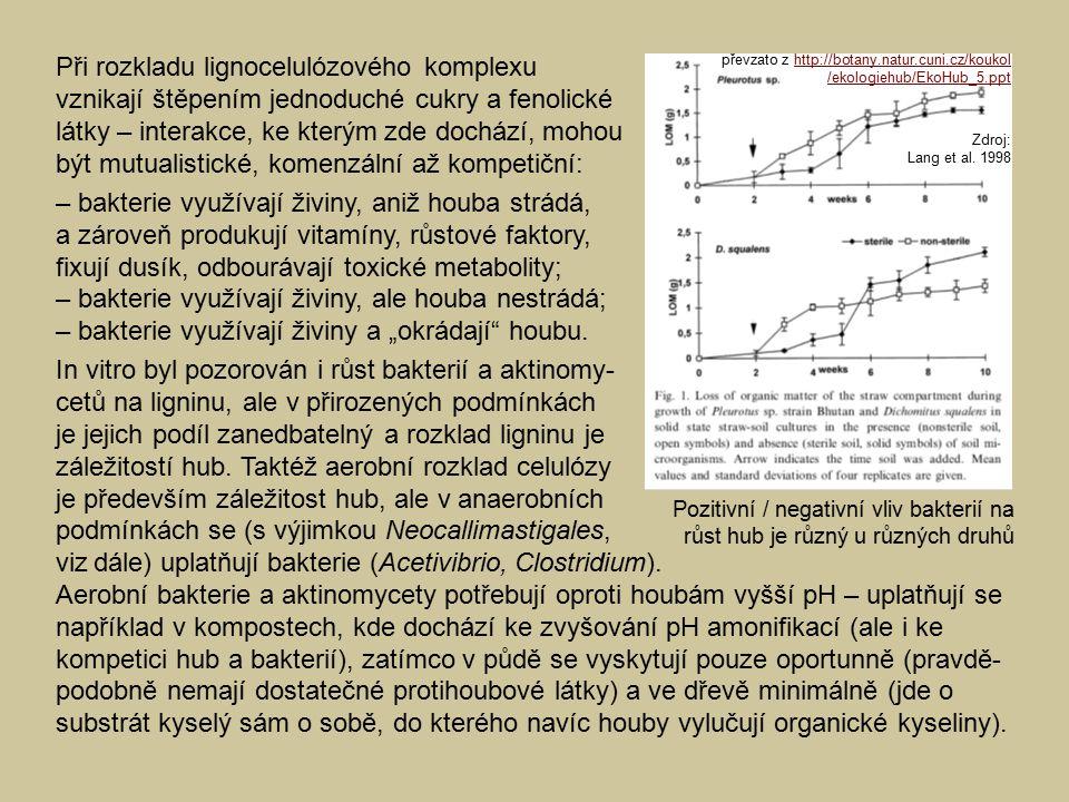 """Při rozkladu lignocelulózového komplexu vznikají štěpením jednoduché cukry a fenolické látky – interakce, ke kterým zde dochází, mohou být mutualistické, komenzální až kompetiční: – bakterie využívají živiny, aniž houba strádá, a zároveň produkují vitamíny, růstové faktory, fixují dusík, odbourávají toxické metabolity; – bakterie využívají živiny, ale houba nestrádá; – bakterie využívají živiny a """"okrádají houbu."""