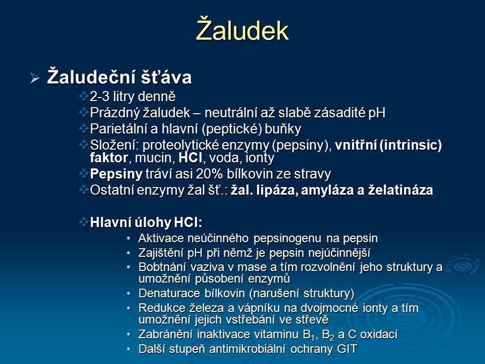Žaludek  Žaludeční šťáva  2-3 litry denně  Prázdný žaludek – neutrální až slabě zásadité pH  Parietální a hlavní (peptické) buňky  Složení: prote