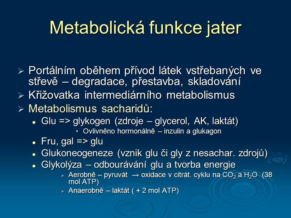 Metabolická funkce jater  Portálním oběhem přívod látek vstřebaných ve střevě – degradace, přestavba, skladování  Křižovatka intermediárního metabol