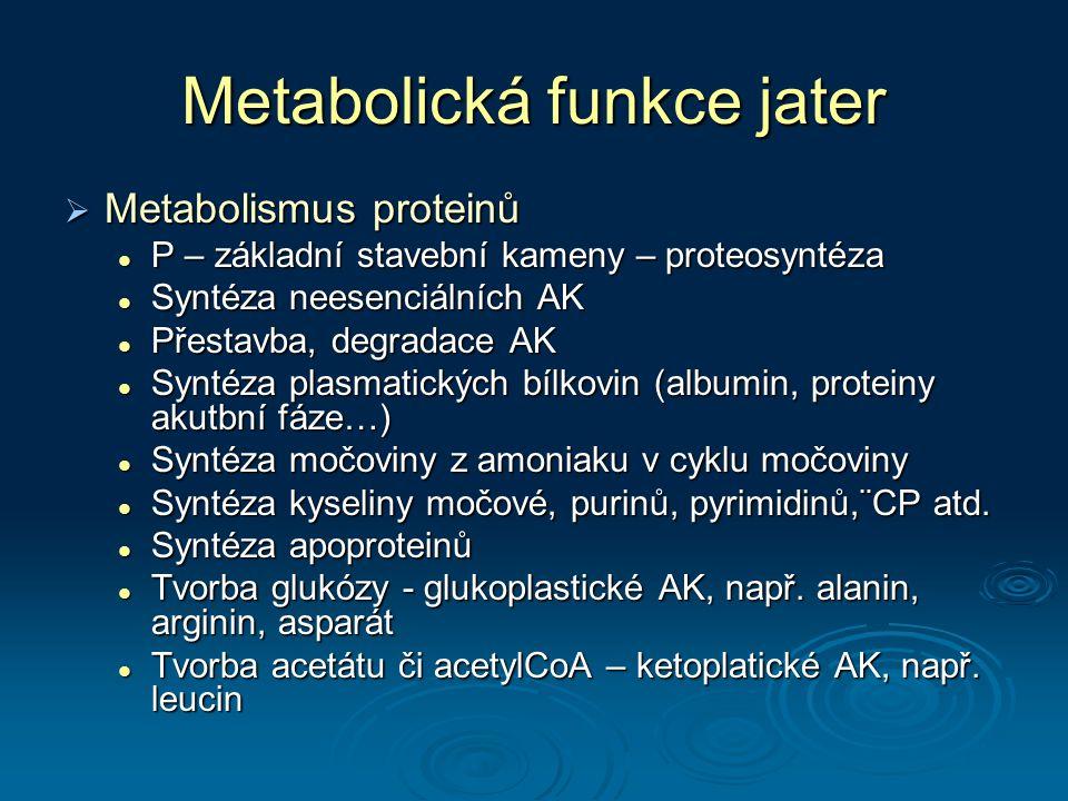Metabolická funkce jater  Metabolismus proteinů P – základní stavební kameny – proteosyntéza P – základní stavební kameny – proteosyntéza Syntéza nee
