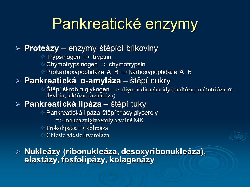 Pankreatické enzymy  Proteázy – enzymy štěpící bílkoviny  Trypsinogen => trypsin  Chymotrypsinogen => chymotrypsin  Prokarboxypeptidáza A, B => ka