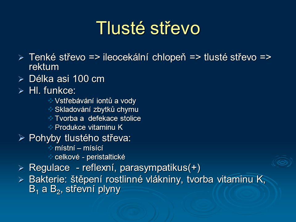Tlusté střevo  Tenké střevo => ileocekální chlopeň => tlusté střevo => rektum  Délka asi 100 cm  Hl. funkce:  Vstřebávání iontů a vody  Skladován