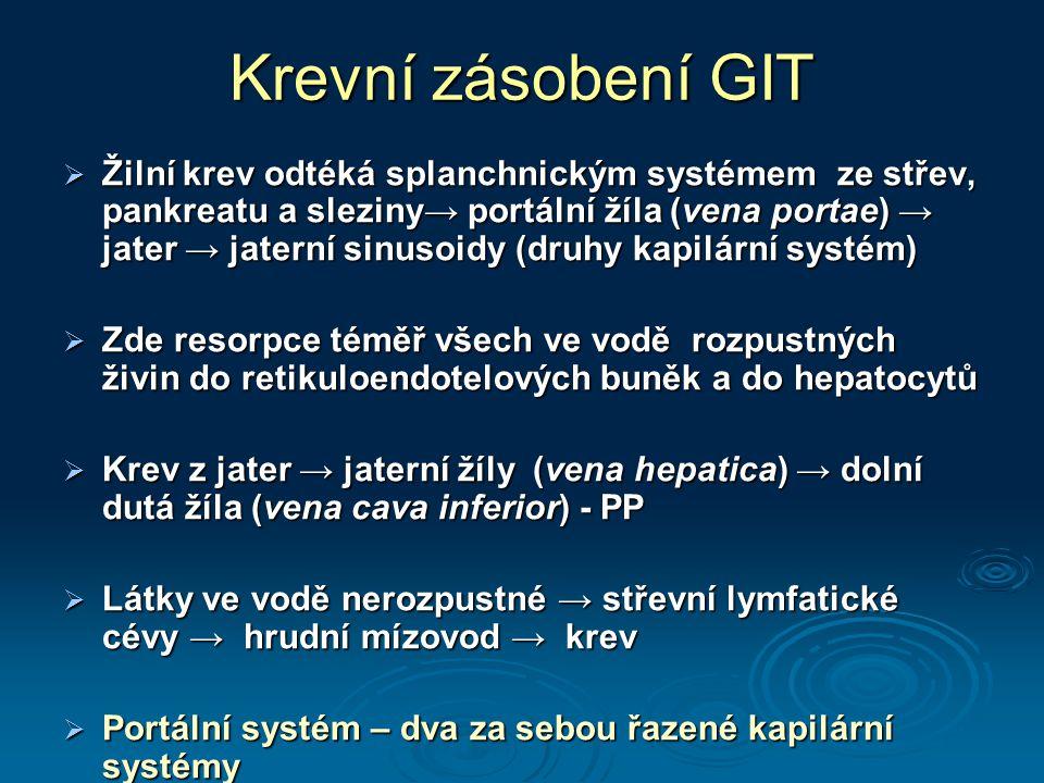 Krevní zásobení GIT  Žilní krev odtéká splanchnickým systémem ze střev, pankreatu a sleziny→ portální žíla (vena portae) → jater → jaterní sinusoidy
