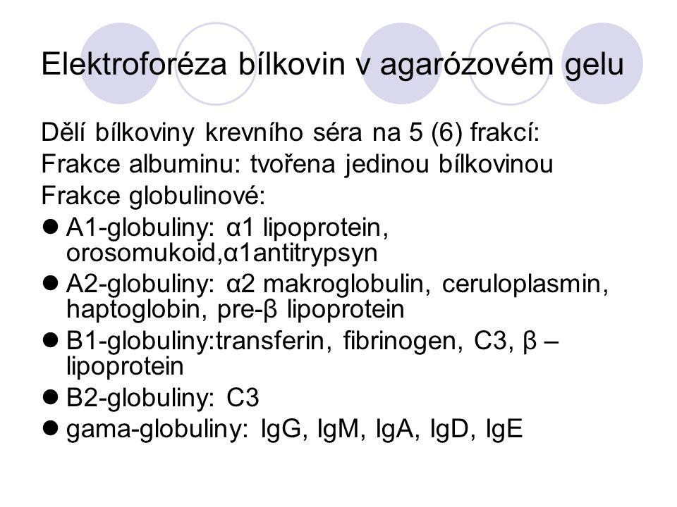 Elektroforéza bílkovin v agarózovém gelu Dělí bílkoviny krevního séra na 5 (6) frakcí: Frakce albuminu: tvořena jedinou bílkovinou Frakce globulinové:
