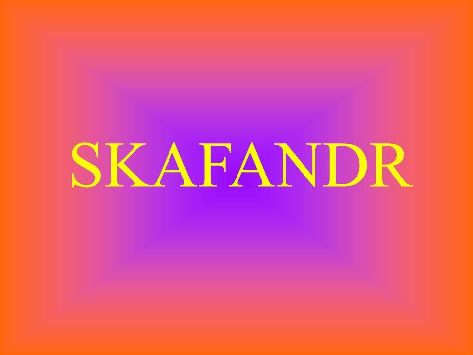 SKAFANDR