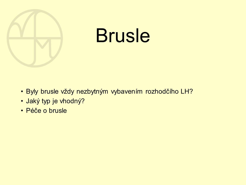Brusle Byly brusle vždy nezbytným vybavením rozhodčího LH? Jaký typ je vhodný? Péče o brusle