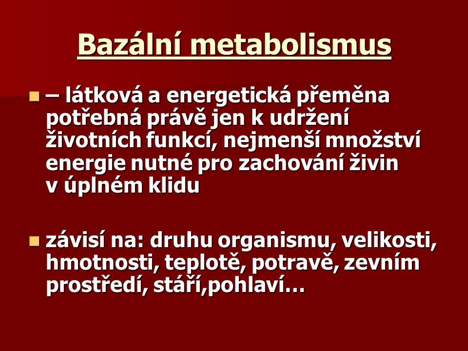 Bazální metabolismus – látková a energetická přeměna potřebná právě jen k udržení životních funkcí, nejmenší množství energie nutné pro zachování živi