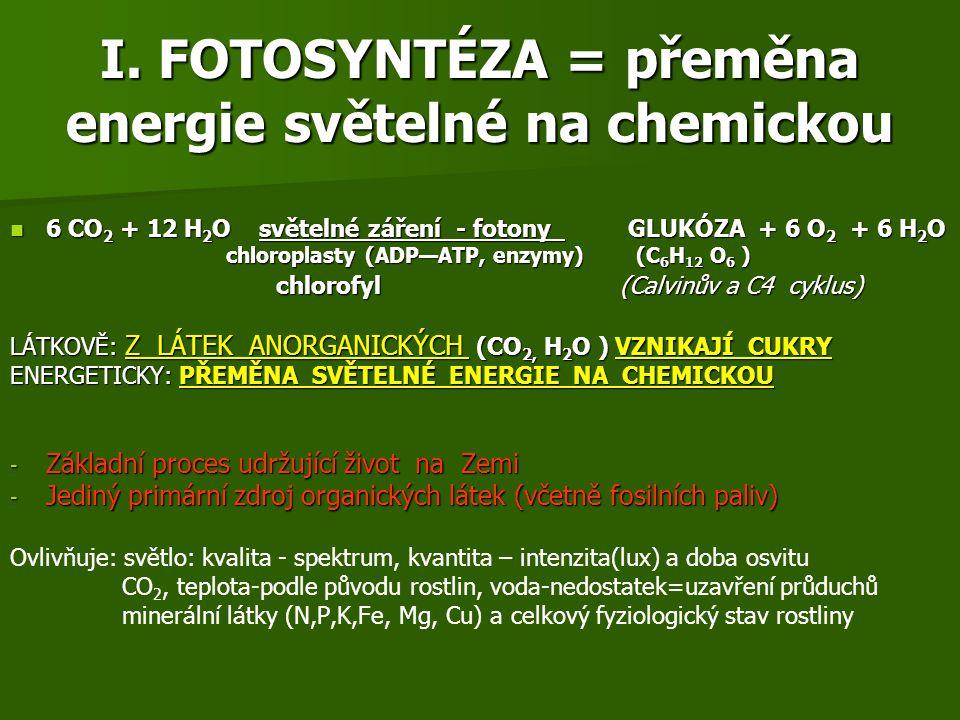 I. FOTOSYNTÉZA = přeměna energie světelné na chemickou 6 CO 2 + 12 H 2 O světelné záření - fotony GLUKÓZA + 6 O 2 + 6 H 2 O 6 CO 2 + 12 H 2 O světelné