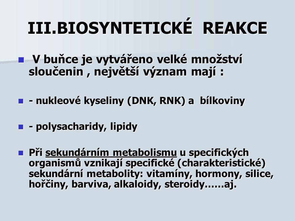III.BIOSYNTETICKÉ REAKCE V buňce je vytvářeno velké množství sloučenin, největší význam mají : V buňce je vytvářeno velké množství sloučenin, největší