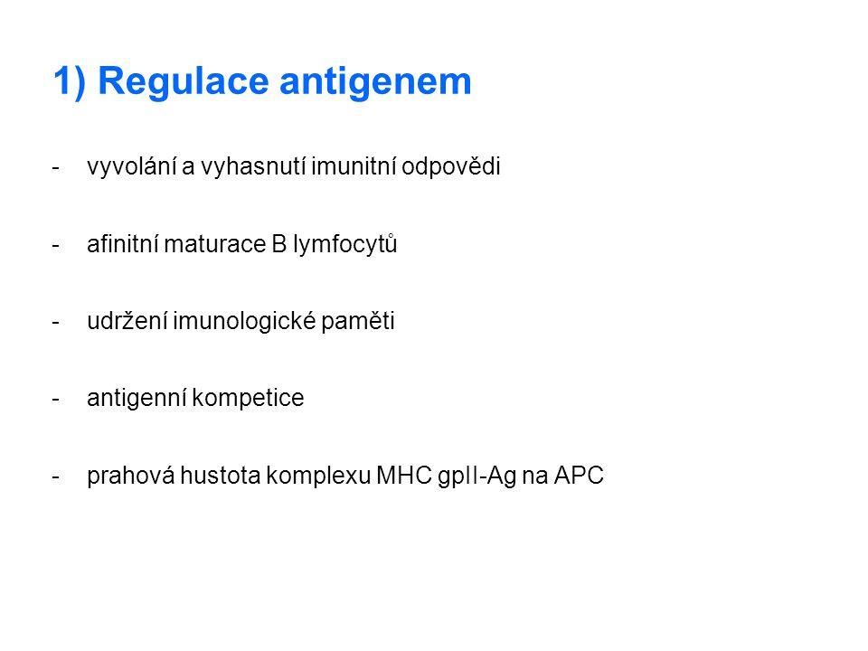 1) Regulace antigenem - vyvolání a vyhasnutí imunitní odpovědi - afinitní maturace B lymfocytů - udržení imunologické paměti - antigenní kompetice - p