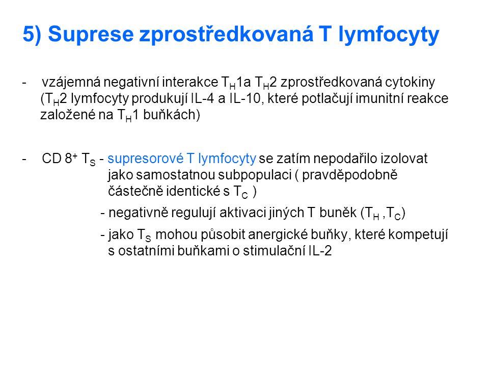 5) Suprese zprostředkovaná T lymfocyty - vzájemná negativní interakce T H 1a T H 2 zprostředkovaná cytokiny (T H 2 lymfocyty produkují IL-4 a IL-10, k