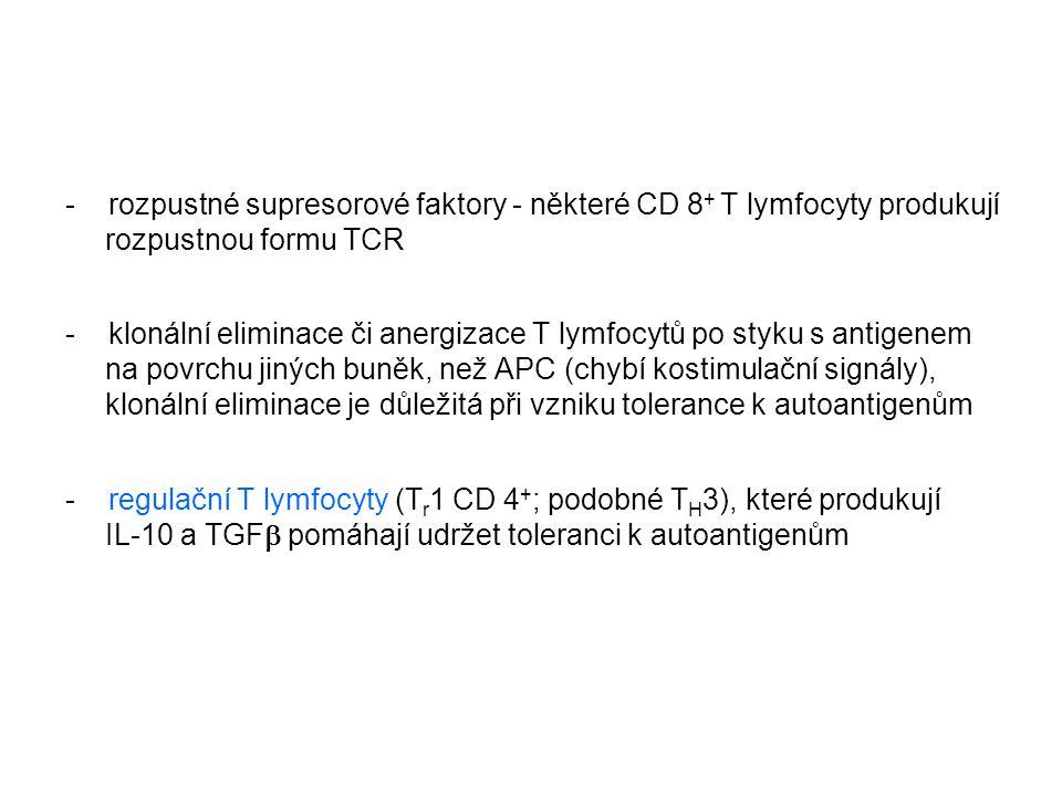 - rozpustné supresorové faktory - některé CD 8 + T lymfocyty produkují rozpustnou formu TCR - klonální eliminace či anergizace T lymfocytů po styku s
