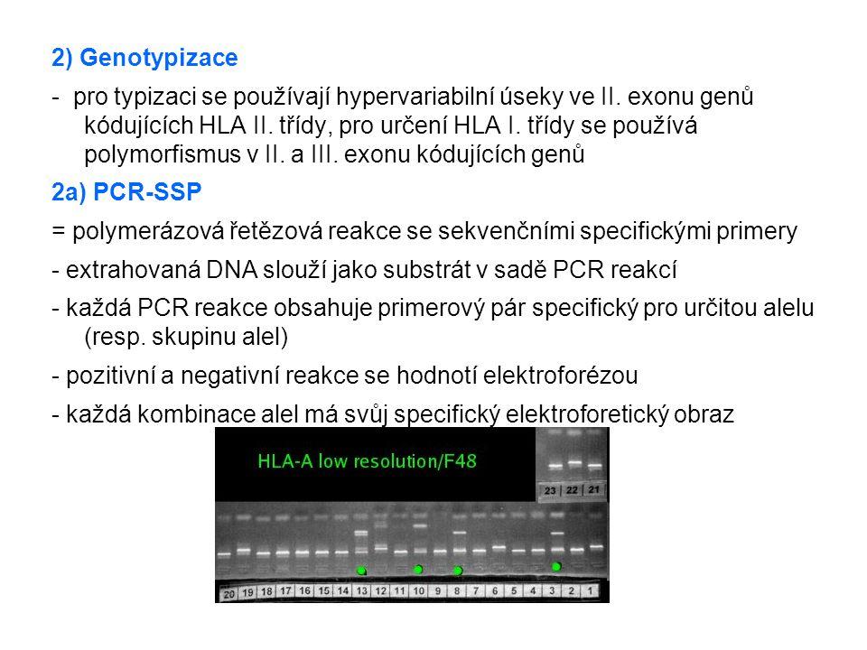 2) Genotypizace - pro typizaci se používají hypervariabilní úseky ve II. exonu genů kódujících HLA II. třídy, pro určení HLA I. třídy se používá polym