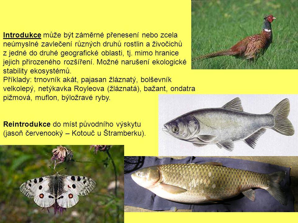 Příklady zvlášť chráněných druhů rostlin: Kapraďorosty: cídivky (přeslička)(3), jazyk jelení, kyvor lékařský, plavuň, plavuníky (5), podmrvka hadcová, sleziníky (3), vraneček – celkem 34 druhy.