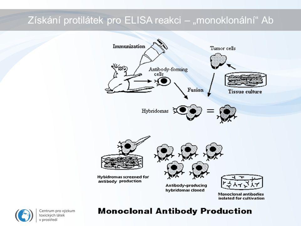 """Získání protilátek pro ELISA reakci – """"monoklonální"""" Ab"""