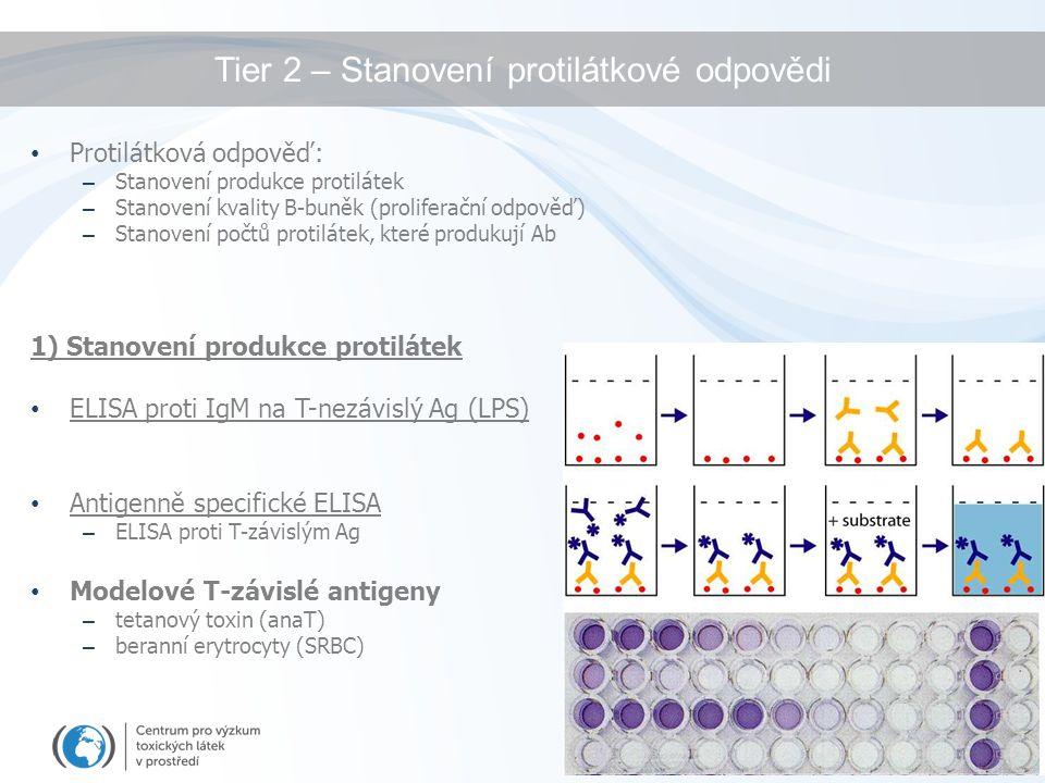 Tier 2 – Stanovení protilátkové odpovědi Protilátková odpověď: – Stanovení produkce protilátek – Stanovení kvality B-buněk (proliferační odpověď) – St