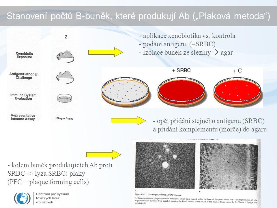 - aplikace xenobiotika vs. kontrola - podání antigenu (=SRBC) - izolace buněk ze sleziny  agar - opět přidání stejného antigenu (SRBC) a přidání komp