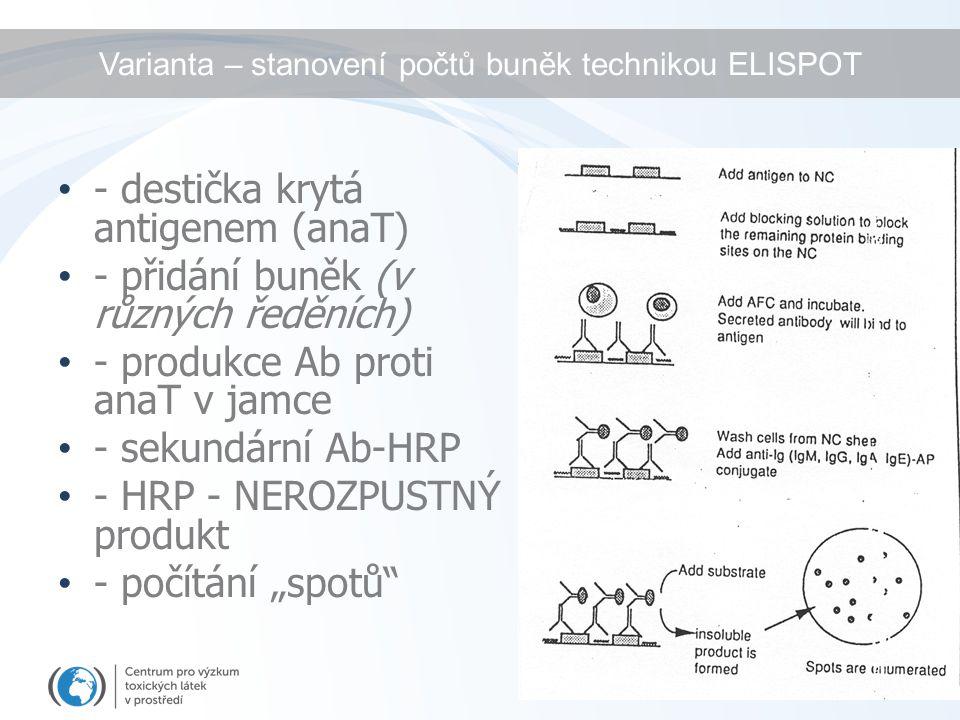 Varianta – stanovení počtů buněk technikou ELISPOT - destička krytá antigenem (anaT) - přidání buněk (v různých ředěních) - produkce Ab proti anaT v j