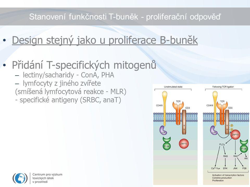 Stanovení funkčnosti T-buněk - proliferační odpověď Design stejný jako u proliferace B-buněk Přidání T-specifických mitogenů – lectiny/sacharidy - Con
