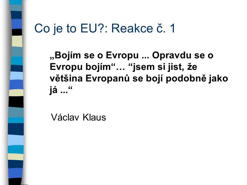 """Co je to EU : Reakce č. 1 """"Bojím se o Evropu..."""